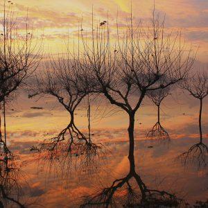 Peru Lima Gölgeler ve Ağaçlar Büyük Ebatlarda
