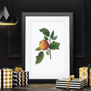 Mutfağınızı Canlandıracak Meyva Çizimleri