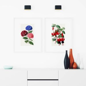 Mutfağınız İçin En Güzel Çiçek Çizimleri