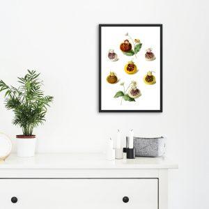 Mutfaklarınız Meyva Çizimleri İle Daha Canlı