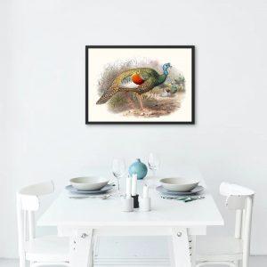 Mutfağınız İçin Rengarenk Hindi Çizimi