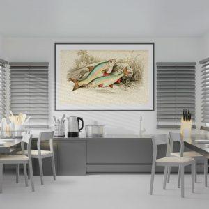 Mutfağınız İçin 4 Farklı Britanya Balıkları Çizim Çalışması A