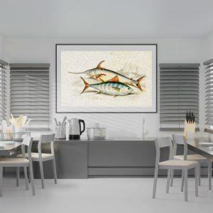 Mutfağınız İçin 4 Farklı Britanya Balıkları Çizim Çalışması B
